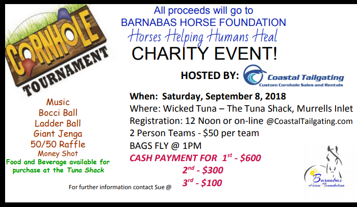 Proceeds go to the Barnabas Horse Foundation